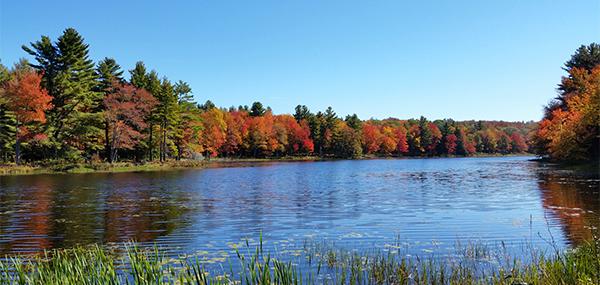 Vibrant colors on Gaston Pond