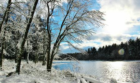 Gaston Pond in the winter sunlight