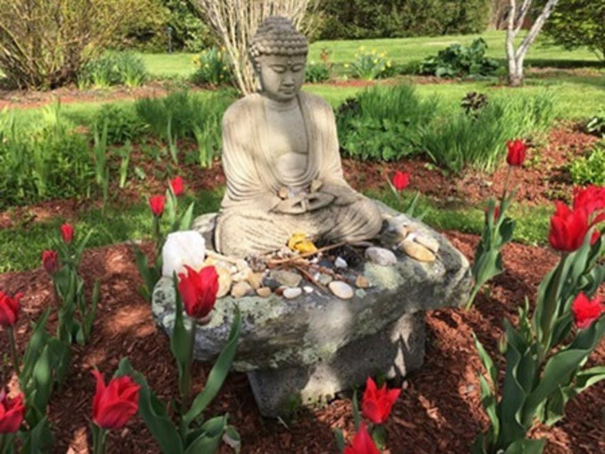Retreat Center Buddha Garden