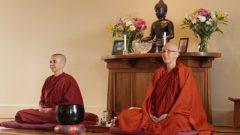 Bhikkhunis meditating