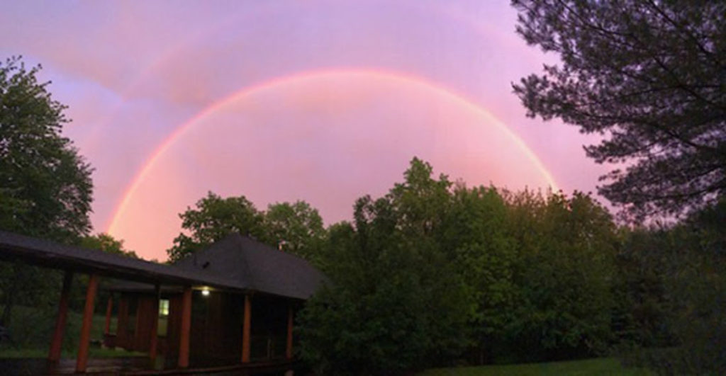 Double Rainbow Forest Refuge