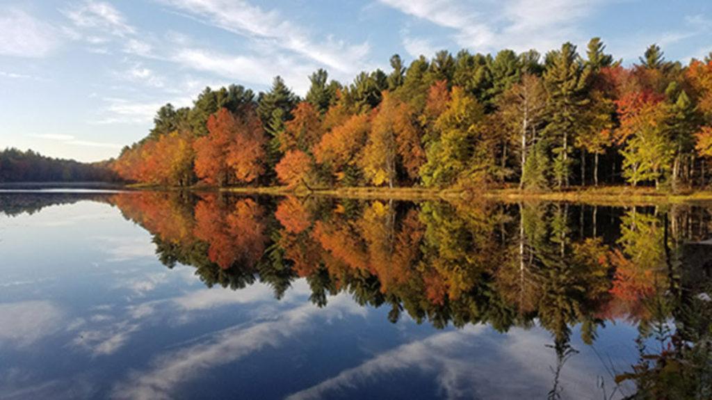 Gaston Pond