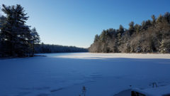 Gaston Pond - Winter